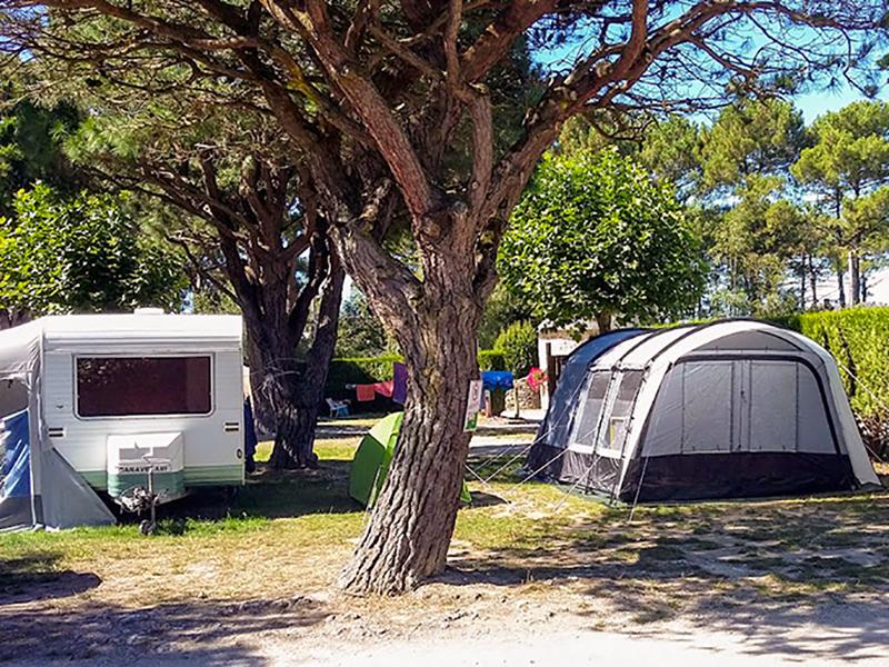 Pourquoi opter pour le camping pour vos prochaines vacances ?